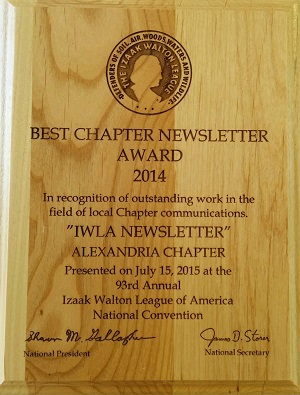 Newsletter Award